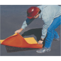 Drain Protector® Safety Seal