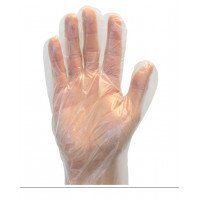 Clear Powder Free Polyethylene Gloves (1 mil, S-XL)